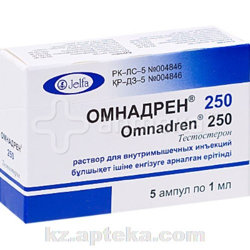 легковой автоприцеп омнадрен 250 цена в аптеке в сыктывкаре использовать